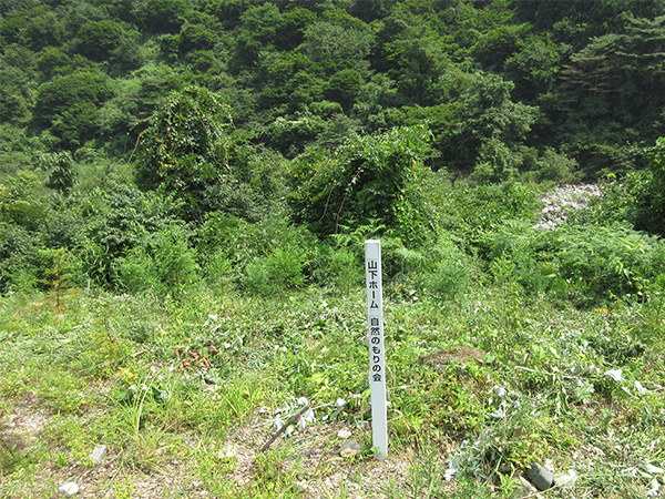 富山県魚津市にて行った山下ホームの植樹活動